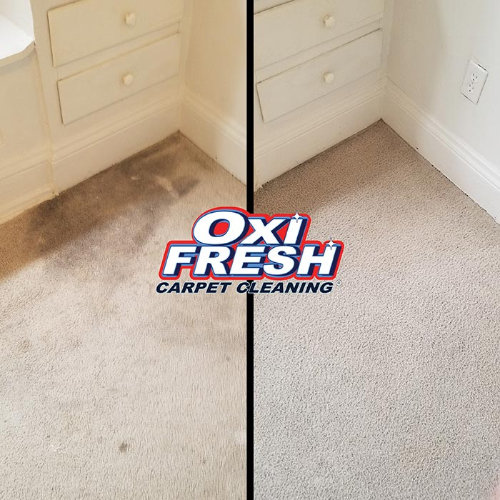 Oxi Fresh Carpet Cleaning Charlotte Nc 3 Rms Cleaned